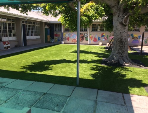 Beat the Drought – Synthetic Lawn