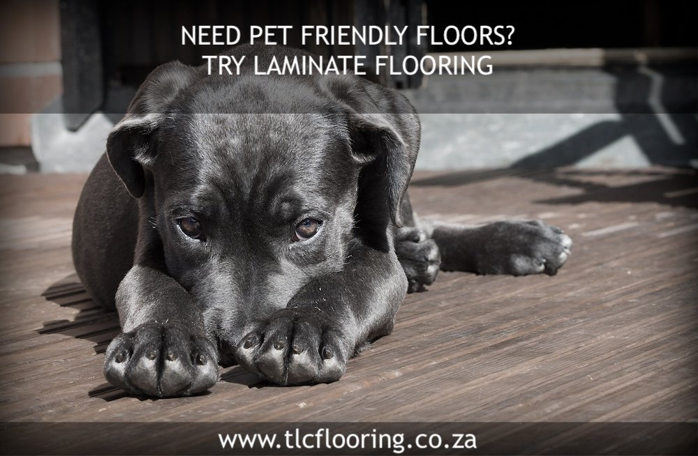 laminate flooring cape town - tlc flooring