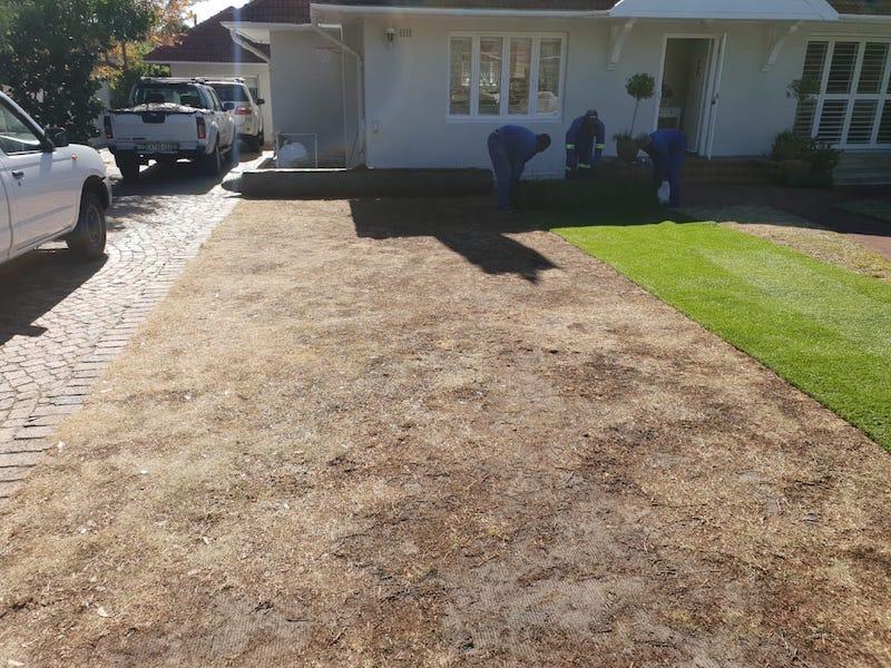 artificial grass cape town fake grass installation tlc outdoor