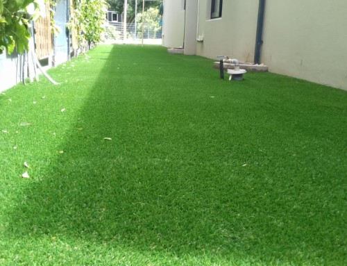 Give your back yard a bit of TLC with a lush layer of Artificial Grass