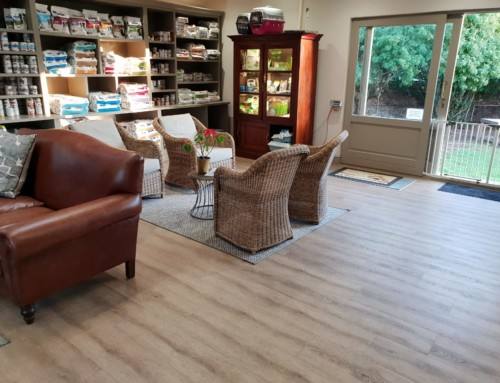 Local Constantia Luxury Vinyl Flooring Installation