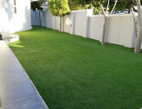 End of Summer, Grass Growth Ending, Try Artificial Grass