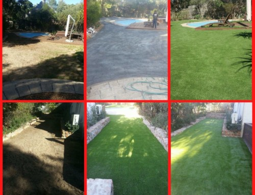 Get Artificial Grass For Your Office Or Home From TLC