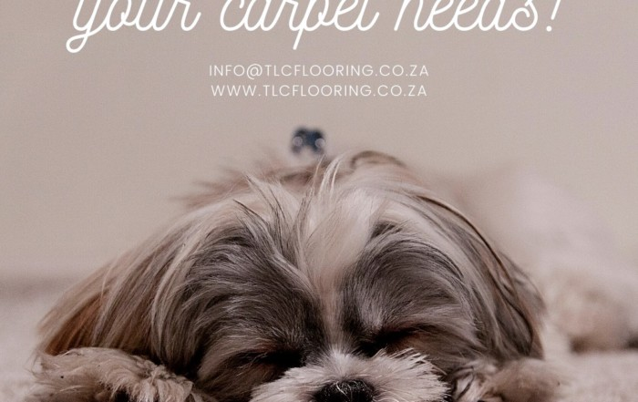 carpets cape town tlc flooring