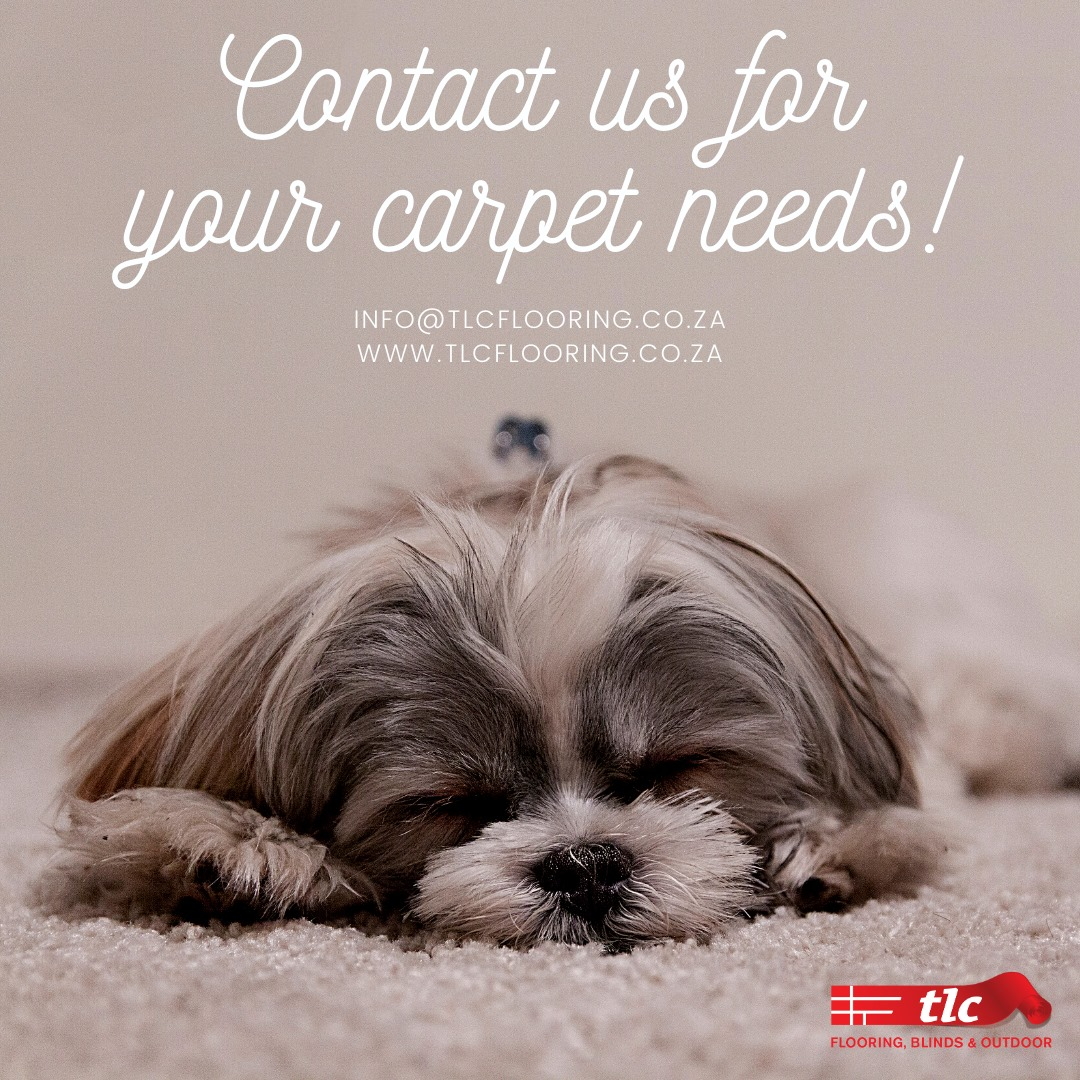 carpets cape town tlc flooring
